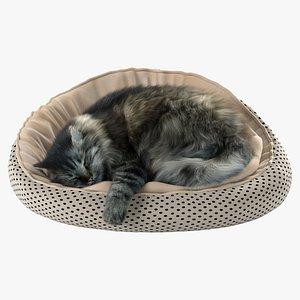 Cat with Fur 3D model
