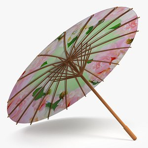 3D Traditional Chinese Oil Paper Umbrella