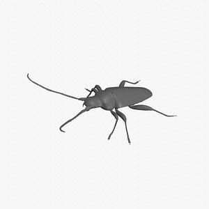 3D longhorn beetle