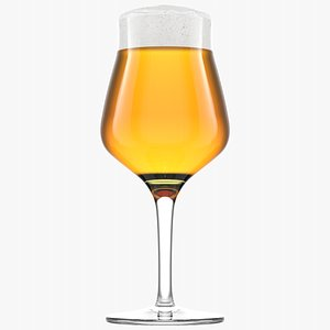 Beer Glass  5  Without Condensation 3D model