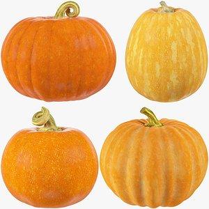 3D Pumpkins Collection V3