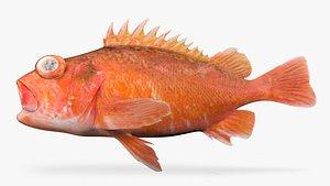 greenblotched rockfish fish model