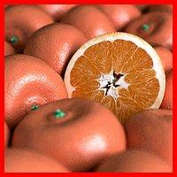 Orange Tangerine Mandarin Clementine