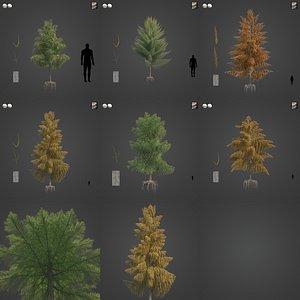 2021 PBR Bald Cypress Collection - Taxodium Distichum model