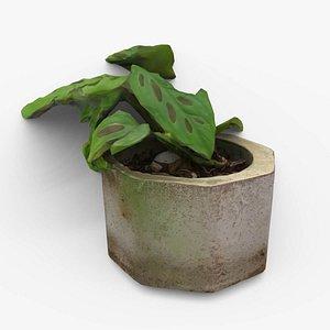 Monstera Concrete Pot Small 3D model