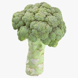 3D broccoli stem 01