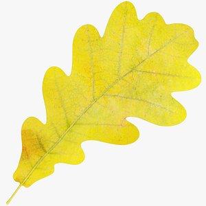 3D Oak Leaf V1