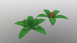 3D Low Poly Tropical Plant
