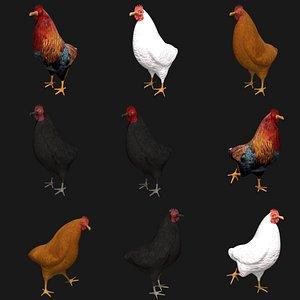 3D chicken rigged model