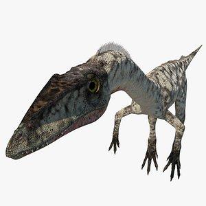 coelophysis dinosaur model