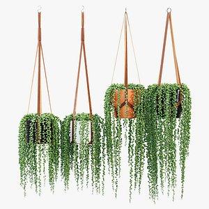 plant hangers 3D model