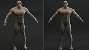 Synthetic humanoid 3D model