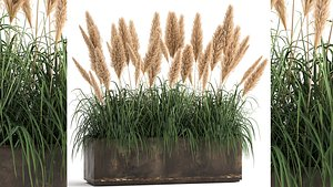 Reeds in a rusty flower pot for the interior 932 model