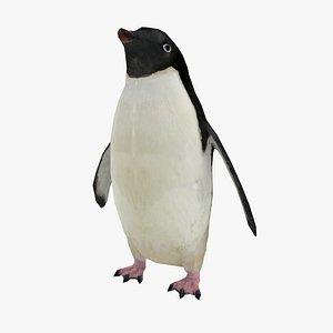 penguin adelie 3D model