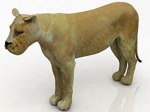 3D Lioness
