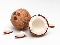 Coconut Whole and Party on Scene