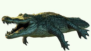 3D alligator crocodile reptile