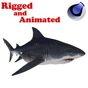 Mother Shark Rigged and animated 3D model