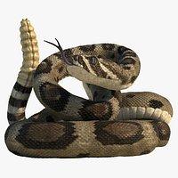 Rattlesnake Rigged Animated