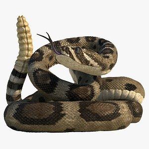 Rattlesnake Rigged Animated 3D