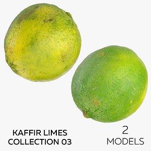 3D Kaffir Limes Collection 03 - 2 models model