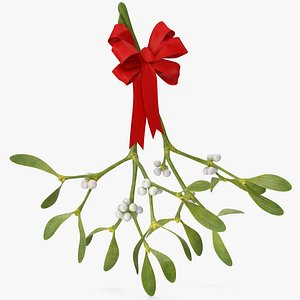 Mistletoe with Red Bow 3D model