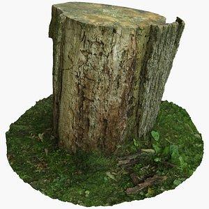 3D Tree Stump Photoscan model