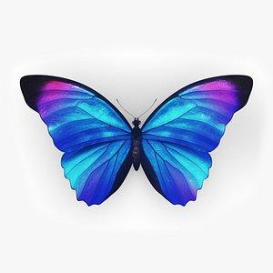morpho butterfly blue 3D