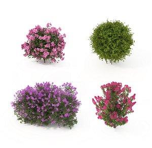 Realistic Shrub Bush Flower Set 3D model