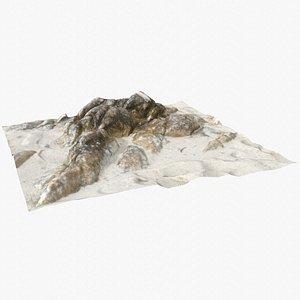 Rock 3D Scan 7 3D model