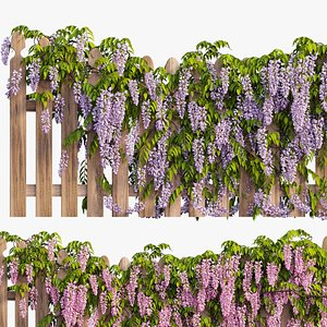 wisterial plant 3D
