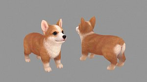 3D Cartoon pet puppy - Corgi - baby dog
