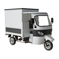 COMMERCIAL THREE WHEELER CAR MOTO FOOD TRUCK