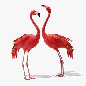 3D Flamingo model
