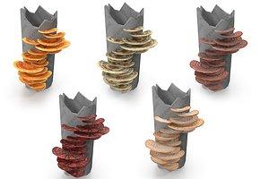 tinder fungus set 3D model