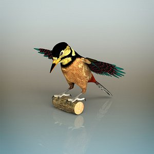 woodpecker bird model