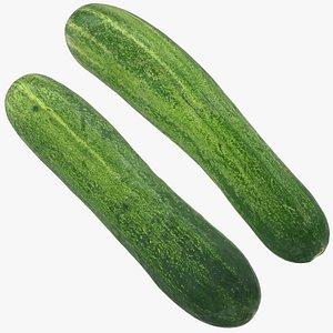 food cucumber fruit model