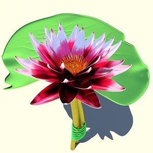 Lotus metal Swamp lily 3D