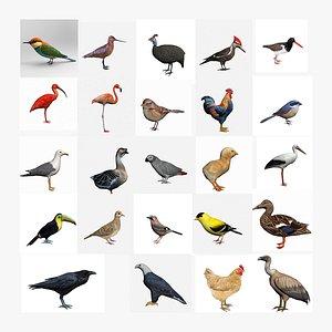 3D 20 Plus Birds Collection model