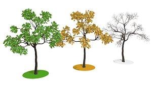 3D model tree nature