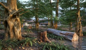 3D model Scanlabz Photoscanned Dawn Redwood Trees Plants