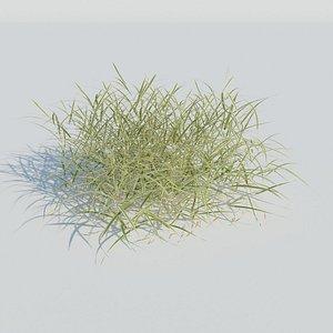 3D Gardener's Garter Grass model