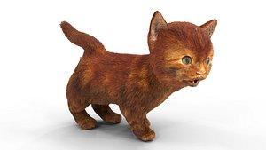Red Fur Cute Cat kitten yellow animated 3D model
