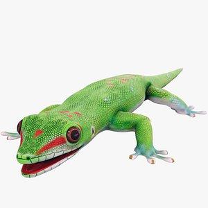 3D Madagascar Day Gecko PBR