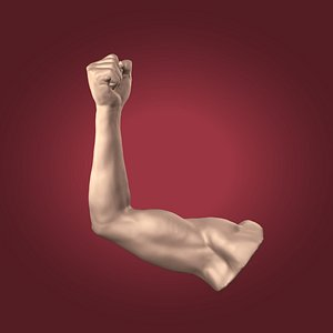 3D figurine arm model