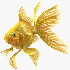 3D Goldfish Swimming Pose