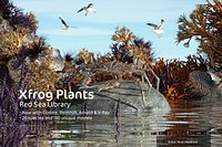 2020 XfrogPlants Red Sea Library