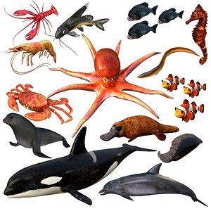 3D aquatic animal water
