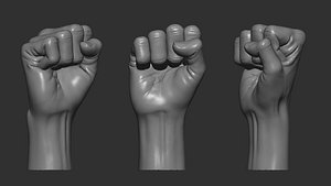 hand punch posture model
