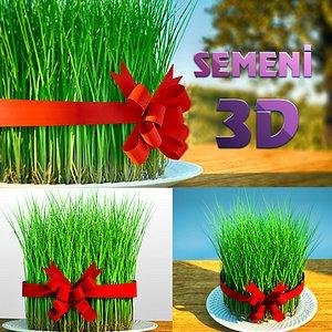 3D model grass holiday
